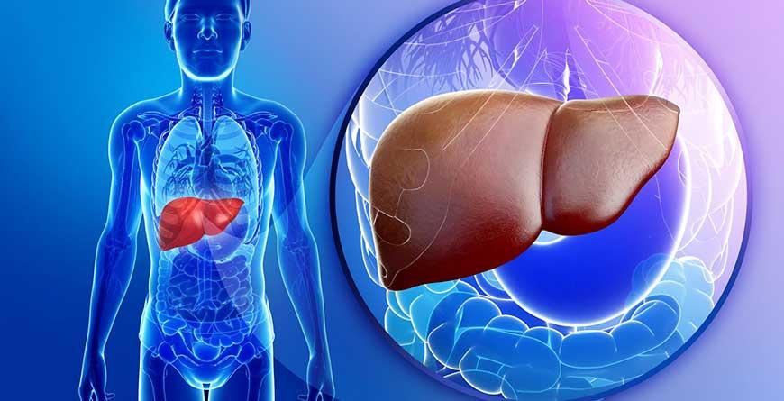scarsa-igiene-orale-tumore-fegato
